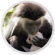 Colobus Monkey And Child Round Beach Towel