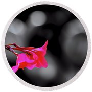 Color By Fuchsia Round Beach Towel by Joseph Hollingsworth
