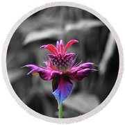 Color Flower Art Round Beach Towel by David Stasiak
