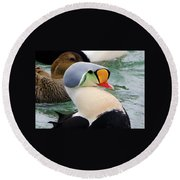 Round Beach Towel featuring the photograph Color For Days by Stephen Flint
