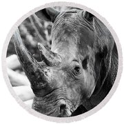 Round Beach Towel featuring the photograph Color Me Rhino by John Haldane