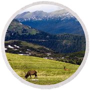 Colorado Elk Round Beach Towel by Marilyn Hunt