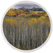 Colorado Splendor Round Beach Towel