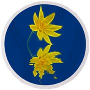 Colorado Wildflower Round Beach Towel by Shane Bechler