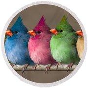 Colored Chicks Round Beach Towel by John Haldane