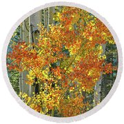 Colorful Aspen Along Million Dollar Highway Round Beach Towel