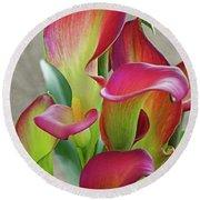 Colorful Calla Lillies Round Beach Towel