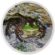 Round Beach Towel featuring the photograph Colorful Camo by Al Powell Photography USA