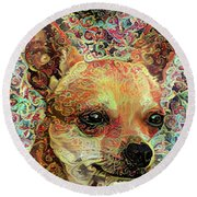 Colorful Chihuahua Abstract Dog Portrait Round Beach Towel by Peggy Collins