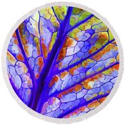 Colorful Coleus Abstract 6 Round Beach Towel