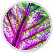 Colorful Coleus Abstract 1 Round Beach Towel