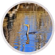 Round Beach Towel featuring the photograph Colorful Cormorant by Al Powell Photography USA