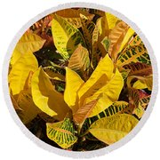Colorful Crotons Round Beach Towel
