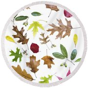 Colorful Fall Leaves Round Beach Towel