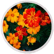 Round Beach Towel featuring the photograph Colorful Flowers by Silvia Ganora