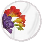 Colorful Freesias Round Beach Towel by Elvira Ladocki