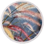 Colorful Grass Art - In The Summer Light - Sharon Cummings Round Beach Towel