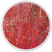 Colorful Grasses Pano Round Beach Towel