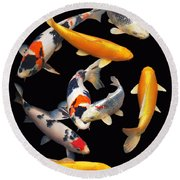 Colorful Japanese Koi Vertical Round Beach Towel