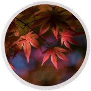 Colorful Japanese Maple Round Beach Towel