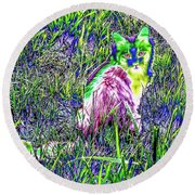 Colorful Kitty Round Beach Towel
