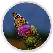 Round Beach Towel featuring the photograph Colorful Monarch by Sandy Keeton