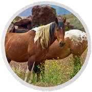Colorful Mustang Horses Round Beach Towel