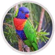 Colorful Parakeet Round Beach Towel
