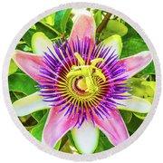 Colorful Passiflora Flower Of Bermuda Round Beach Towel
