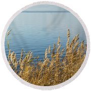 Colorful Reeds Round Beach Towel