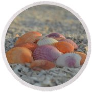 Round Beach Towel featuring the photograph Colorful Scallop Shells by Melanie Moraga