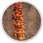 Colorful Snapdragons Round Beach Towel