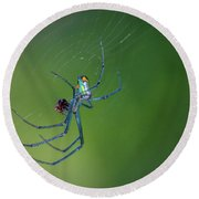 Colorful Spider In Web Round Beach Towel