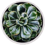 Round Beach Towel featuring the painting Colorful Succulent by Sandra Estes