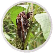 Colorful Summer Cicada Round Beach Towel