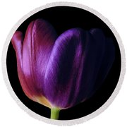 Colorful Tulip Macro Round Beach Towel