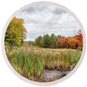 Colorful Webster Bog Round Beach Towel