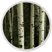 Round Beach Towel featuring the photograph Colors And Texture Of A Forest Portrait by James BO Insogna