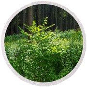 Colors Of A Forest In Vogelsberg Round Beach Towel