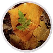Round Beach Towel featuring the photograph Colors Of Autumn by Marie Leslie