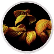 Round Beach Towel featuring the painting Colors Of Autumn Memories  by David Dehner