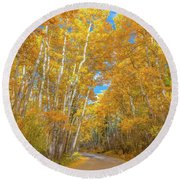 Round Beach Towel featuring the photograph Colors Of Fall by Darren White