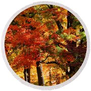 Round Beach Towel featuring the photograph Colors Of Fall by William Selander