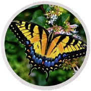 Round Beach Towel featuring the photograph Colors Of Nature - Swallowtail Butterfly 003 by George Bostian