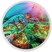 Round Beach Towel featuring the photograph Colors Of The Sea In Lights by Debra and Dave Vanderlaan