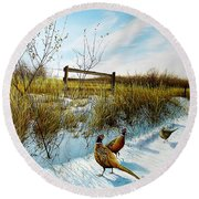 Colors Of Winter - Pheasants Round Beach Towel