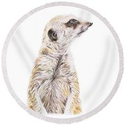 Round Beach Towel featuring the drawing Colour Meerkat by Elizabeth Lock