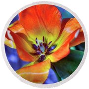 Colourful Tulip Round Beach Towel