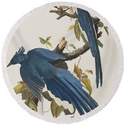 Columbia Jay Round Beach Towel by John James Audubon
