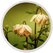 Columbines In Summer Round Beach Towel
